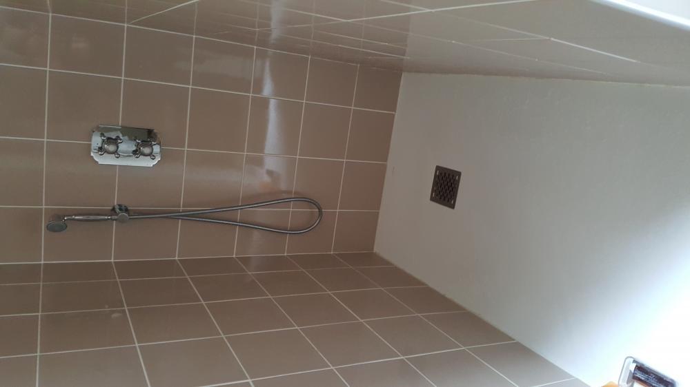 salle d'eau, douche, esprit rétro
